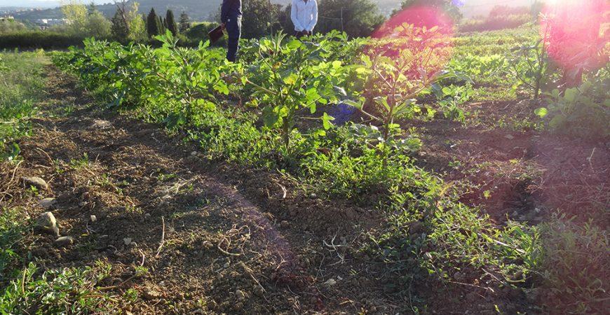 """Integrazione, inclusione e buone pratiche a Montemorcino: """"Dialoghi sul futuro"""""""