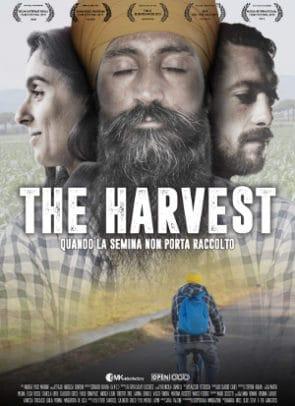 locandina the harvest